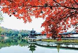 Туры в Китай в Ноябре 2018