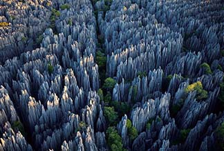 Каменный Лес Шилинь в Куньмине