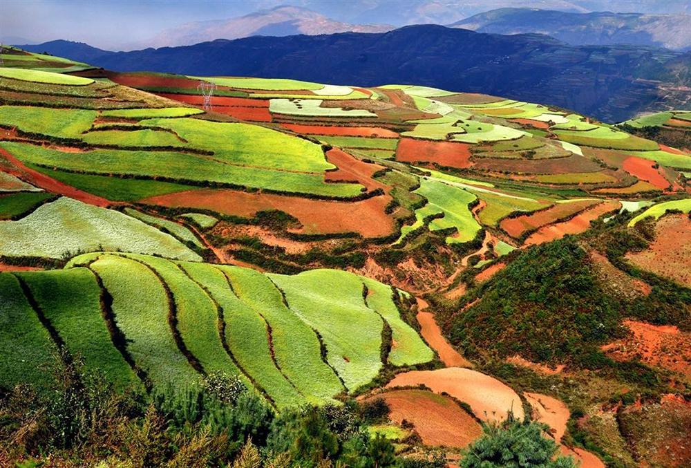 Рисовые террасы Юаньян в Куньмине