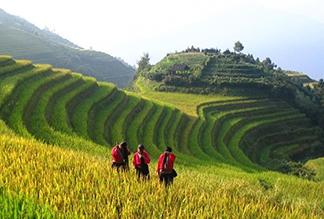 Рисовые террасы Лунцзи