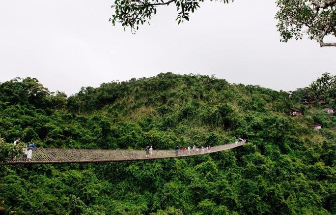 Тропический лес Янода на Хайнане