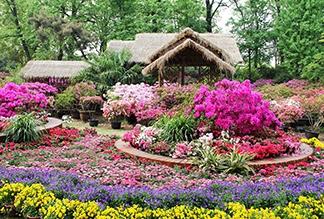 Сад скромного чиновника в Сучжоу