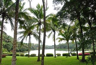 Ботанический сад на Хайнане