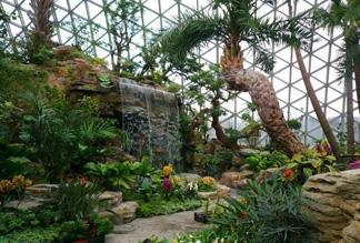 Ботанический сад Шанхая