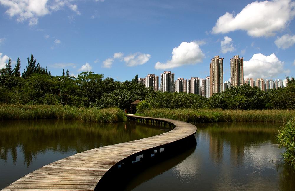 Гонконгский парк водно-болотных угодий