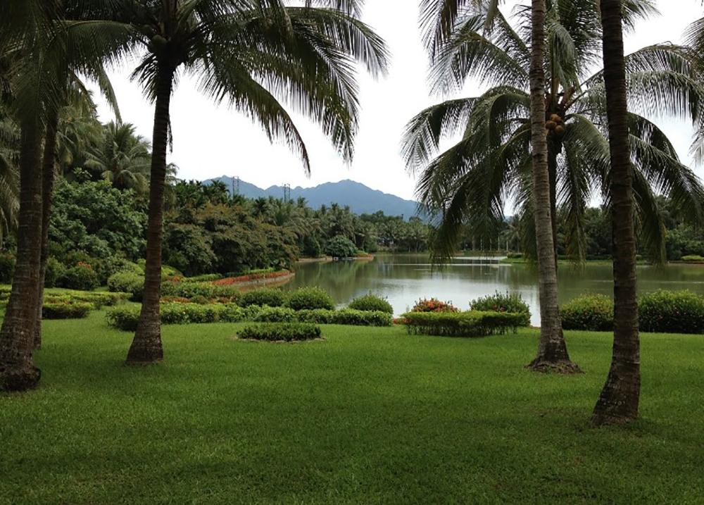 Тропический ботанический сад Синлун
