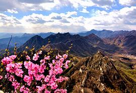 Туры в Китай в Апреле 2021